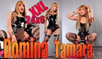 Transsexuelle Domina Tamara XXL