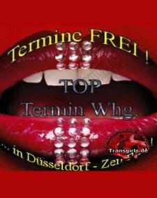 Vorschaubild von TS Transe Termin Wohnung Shemale in Düsseldorf bei Transgirls.de