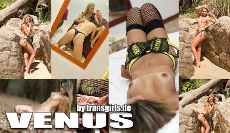 Premium Vorschaubild von TS Transe Venus Shemale in Berlin bei Transgirls.de