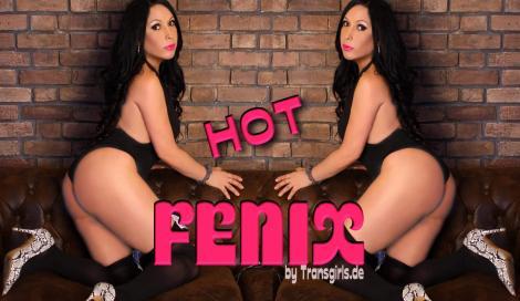 Fenix Shemale in Berlin bei Transgirls.com