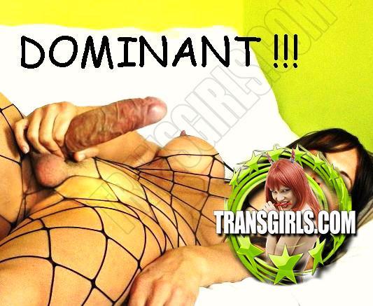 Foto Nr. 1020 von Shemale Trans Valentina