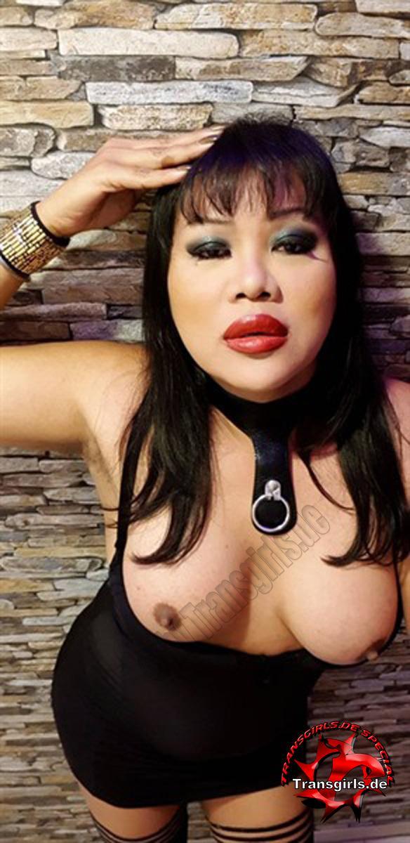 Foto Nr. 107330 von Shemale Trans Napa Porn