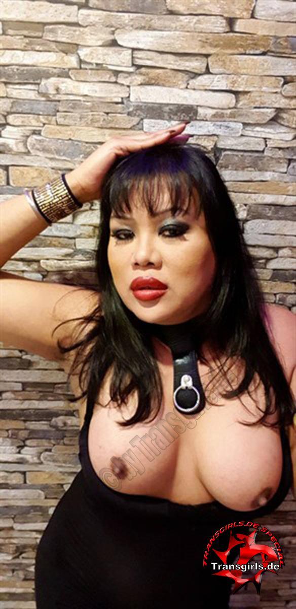 Foto Nr. 107328 von Shemale Trans Napa Porn