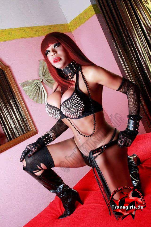 Foto Nr. 101857 von Shemale Trans Donna