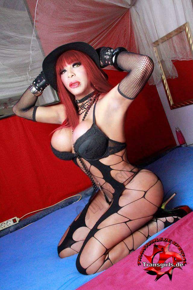 Foto Nr. 101855 von Shemale Trans Donna