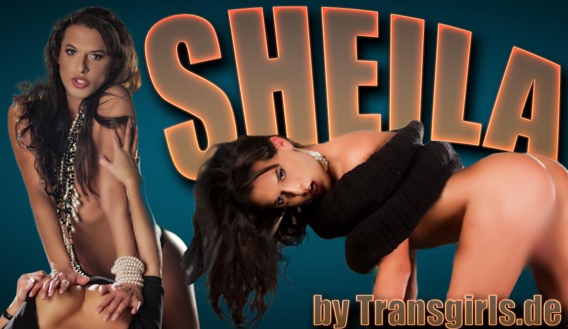 Foto Nr. 56467 von Shemale Trans Sheila