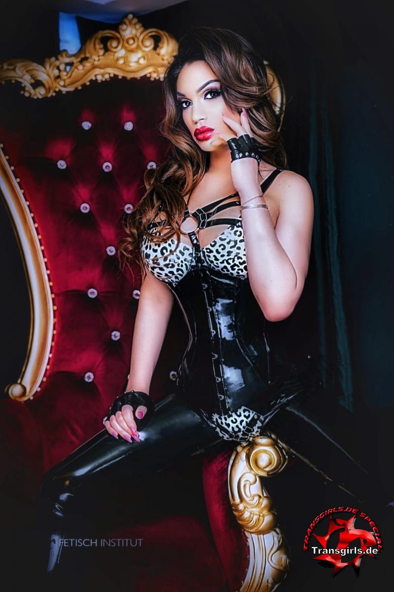 Foto Nr. 118499 von Shemale Trans Miss Sulina