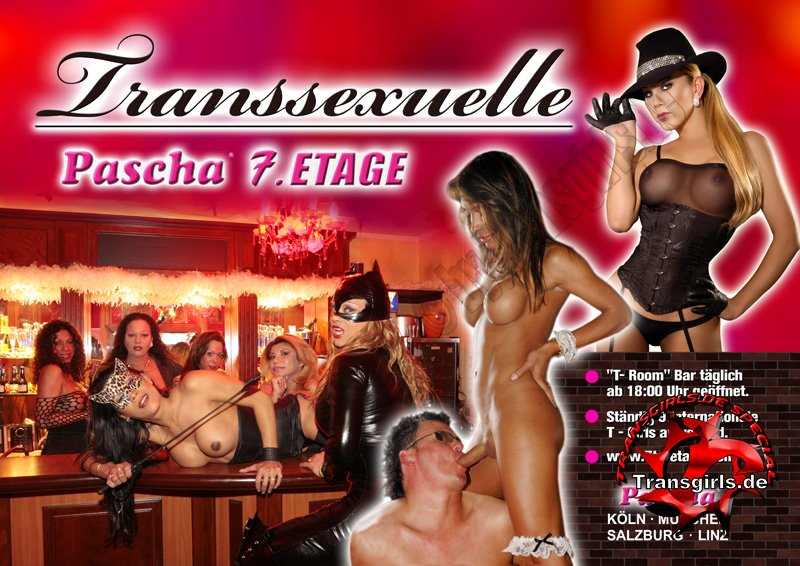 Foto Nr. 86138 von Shemale Trans Pascha