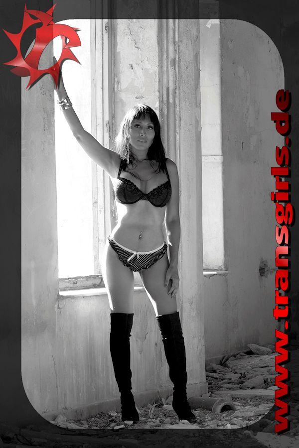 Foto Nr. 44288 von Shemale Trans Hande