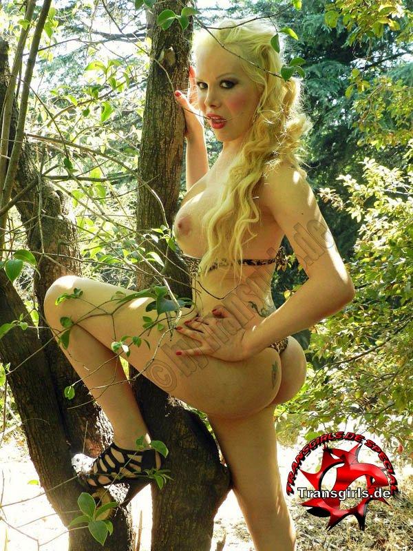Foto Nr. 72977 von Shemale Trans Barbye Hot