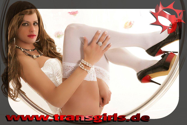 Foto Nr. 44070 von Shemale Trans Flavia