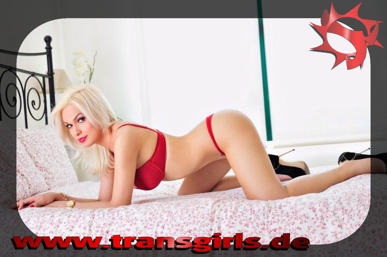 Transsexuelle In Mainz