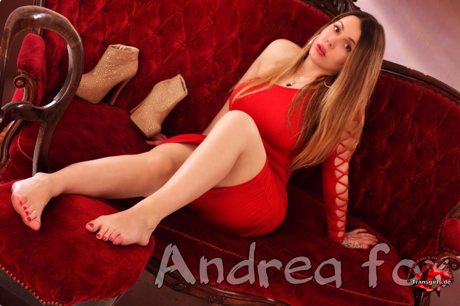 Foto Nr. 105672 von Shemale Trans Andrea Fox