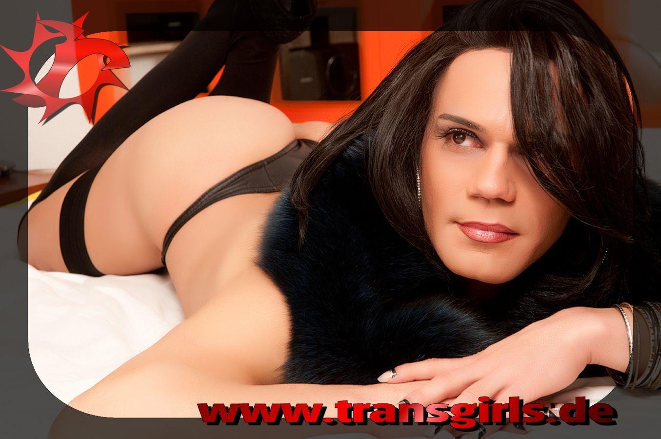 Foto Nr. 47636 von Shemale Trans Nikolly