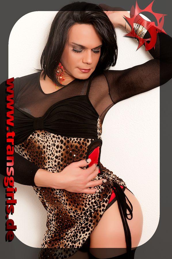 Foto Nr. 47640 von Shemale Trans Nikolly