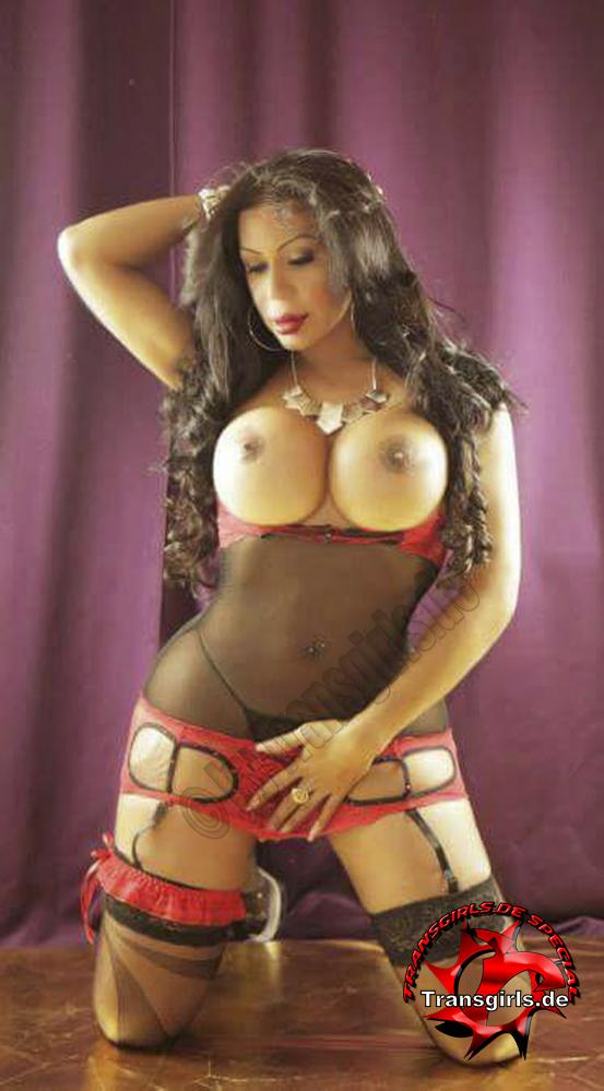 Foto Nr 95863 von Tiffani Trans/Shemale in Berlin    Tel: 0174-6537644