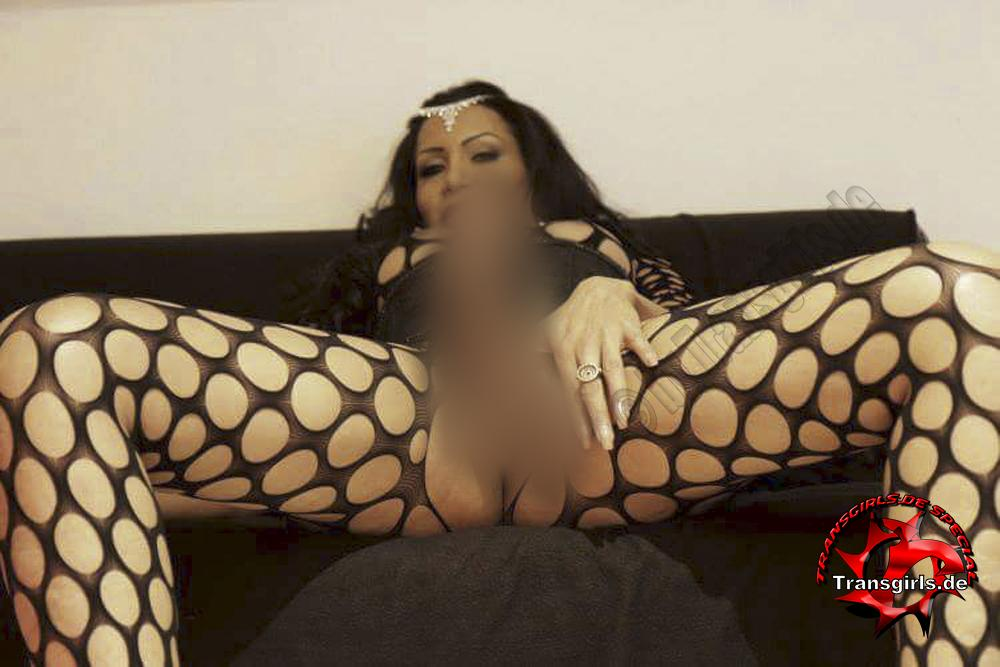 Foto Nr 95856 von Tiffani Trans/Shemale in Berlin    Tel: 0174-6537644