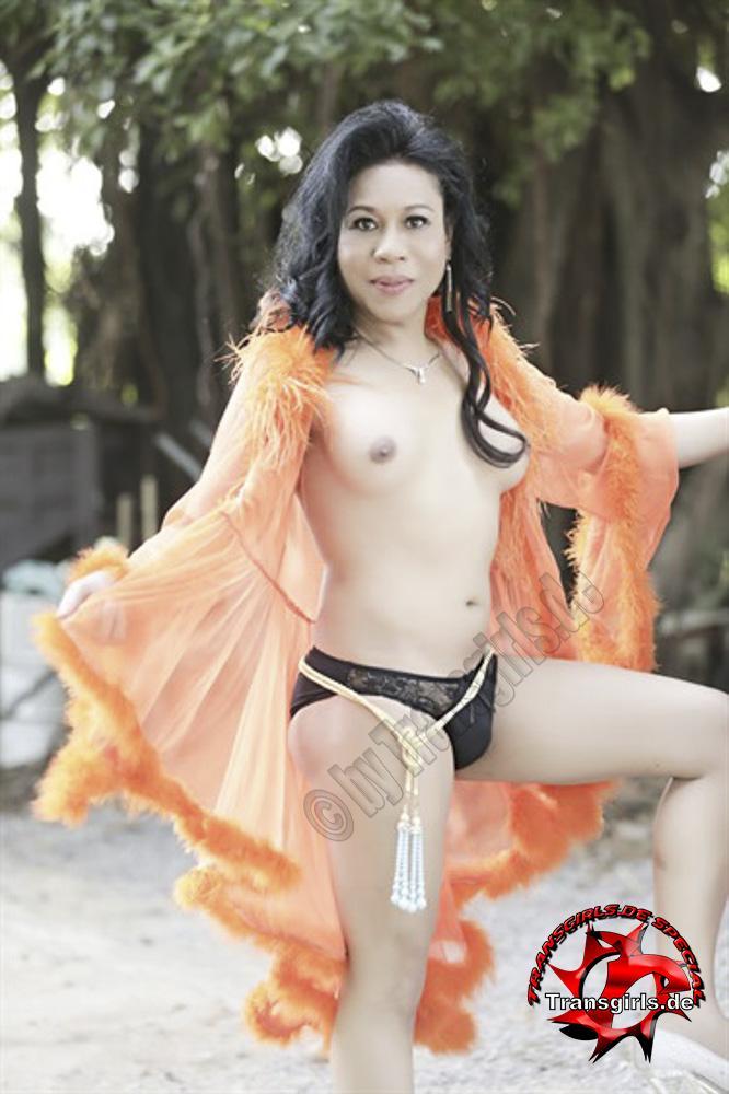 Foto Nr. 93544 von Shemale Trans Pi Yada