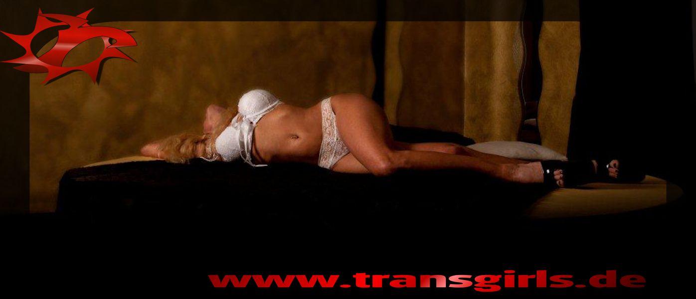 Foto Nr. 52104 von Shemale Trans Fake Inserat Roxy