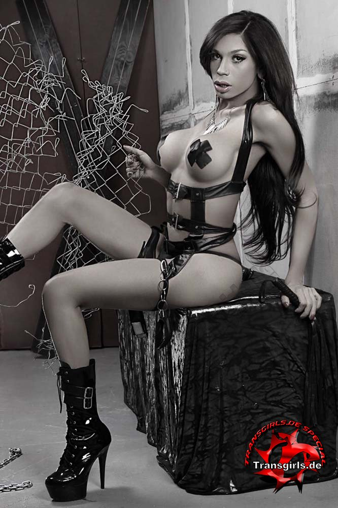 Foto Nr. 84980 von Shemale Trans Sabrina Godoy
