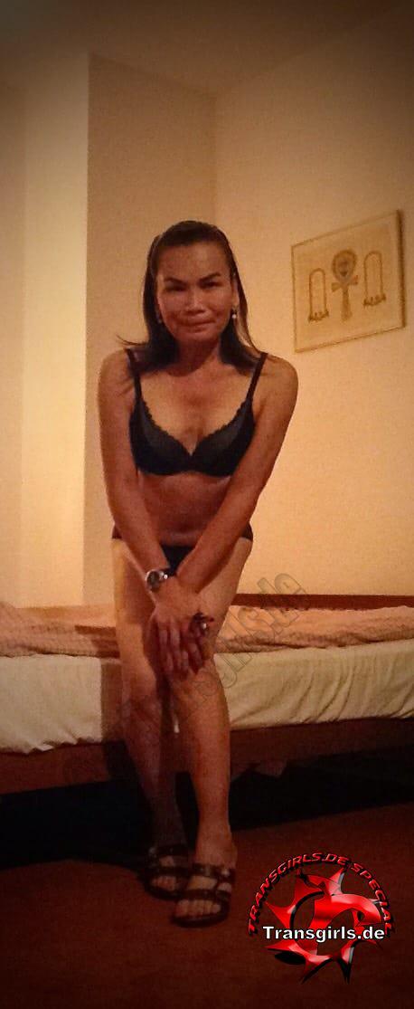 Foto Nr. 121989 von Shemale Trans Kim