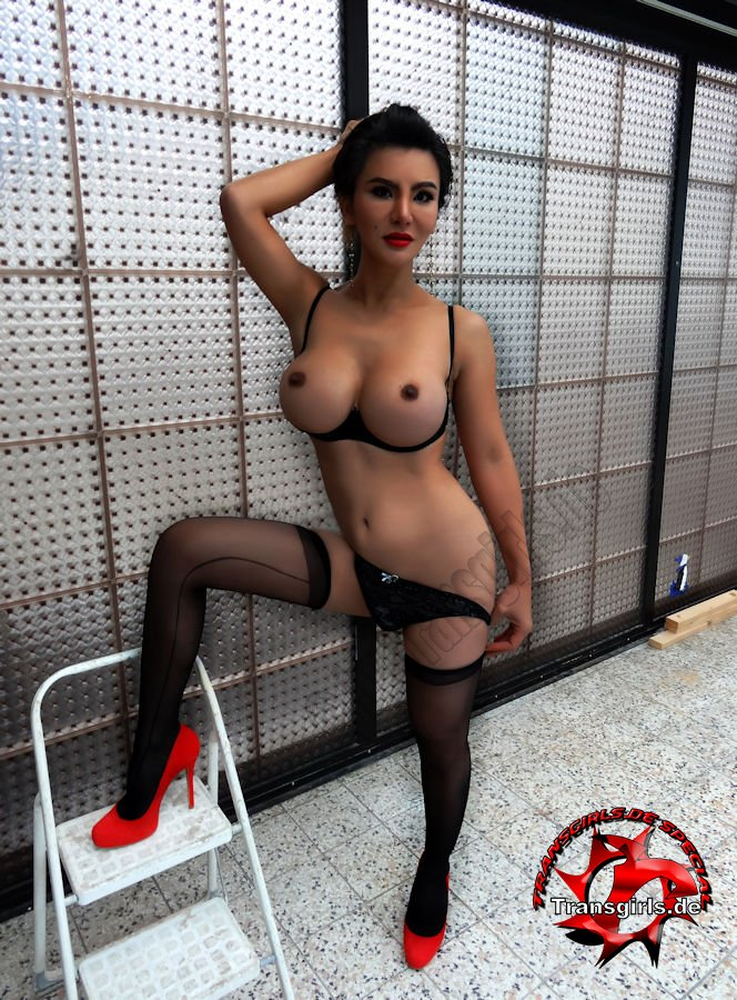 escort agenturen berlin webcam erotik