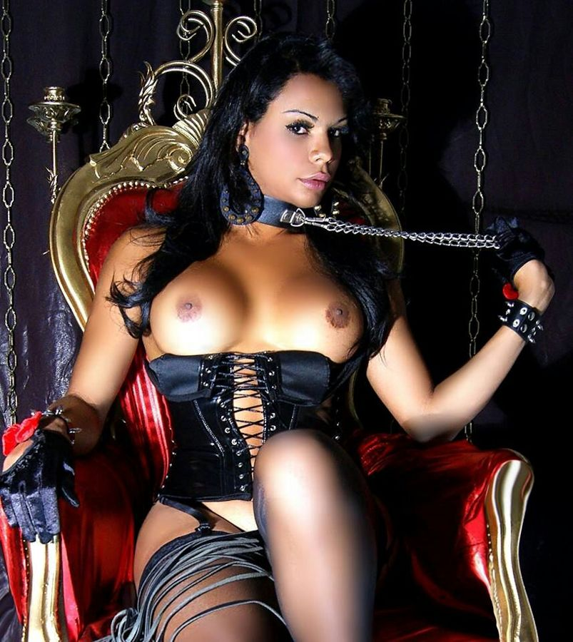 Foto Nr. 60889 von Shemale Trans Fernanda