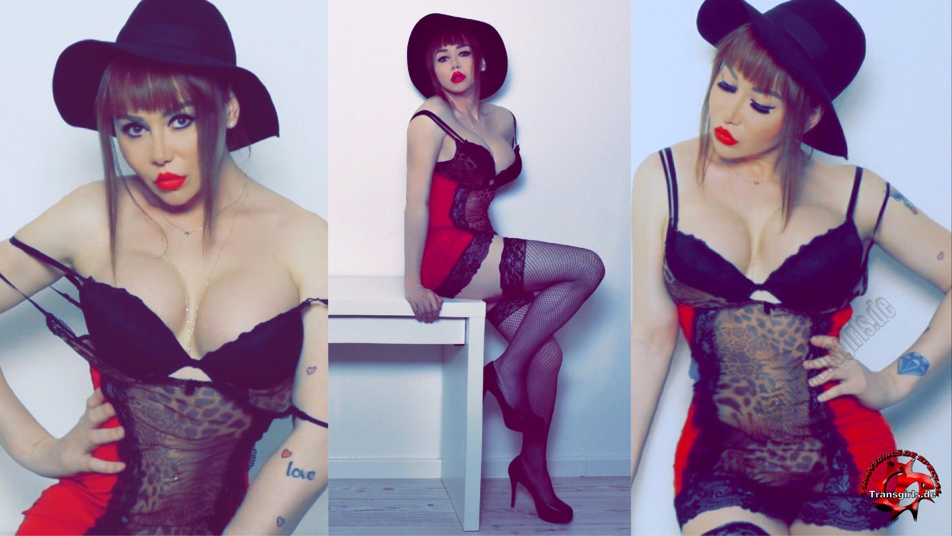Foto Nr. 106285 von Shemale Trans Lolita