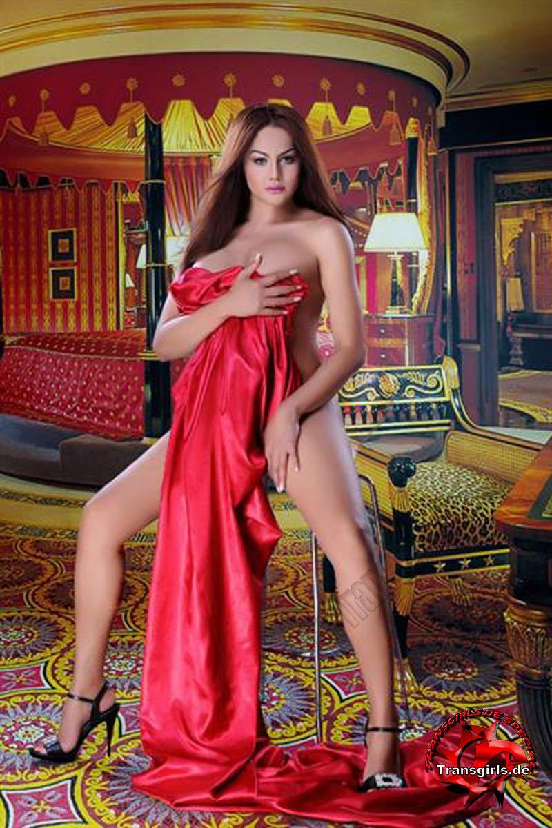 Foto Nr. 105643 von Shemale Trans Mona Lisa