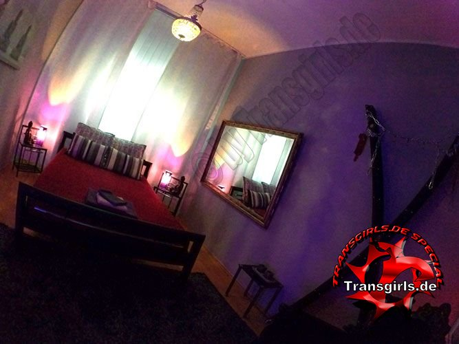 Foto Nr. 73894 von Shemale Trans Termin Wohnung