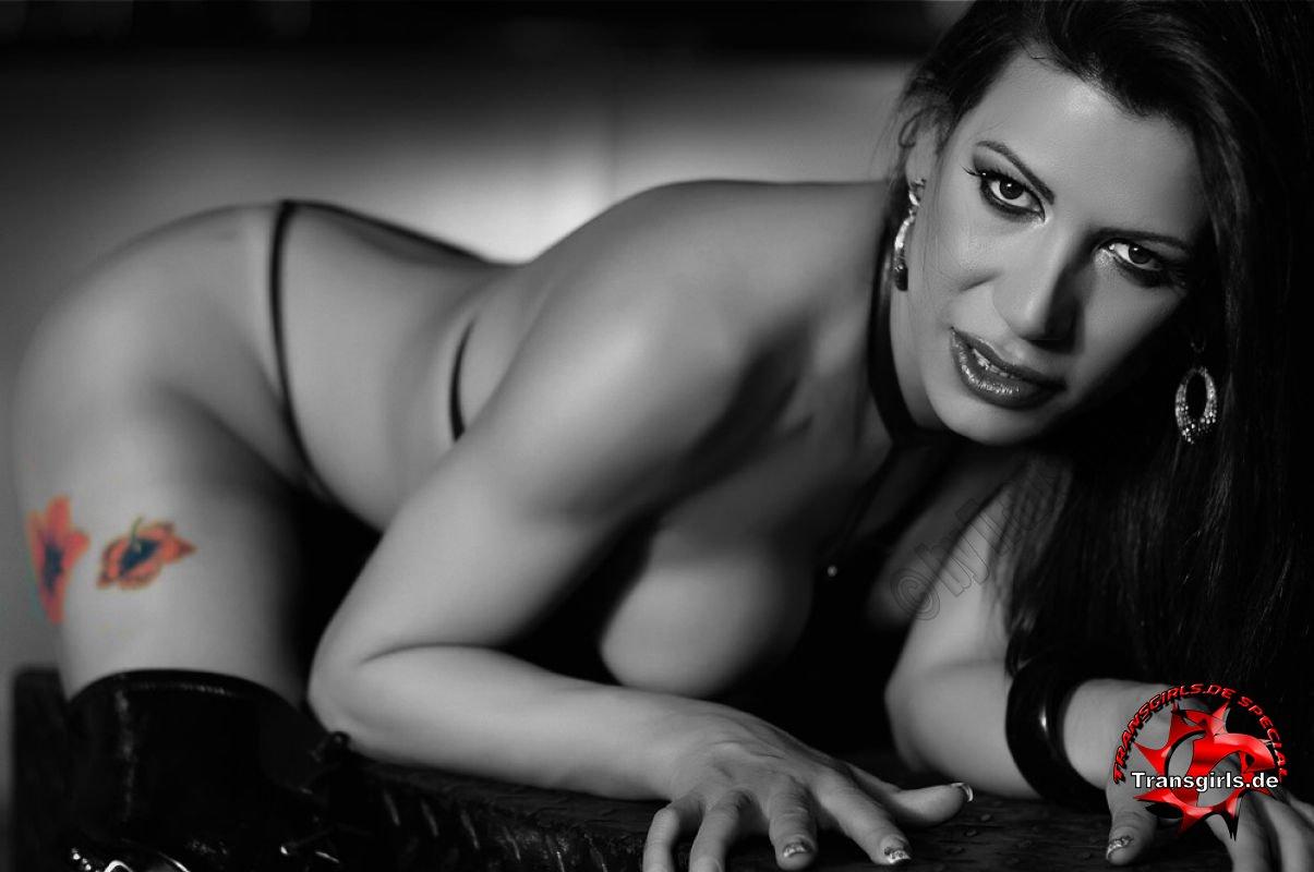Foto Nr. 82235 von Shemale Trans Shanna Ferrari