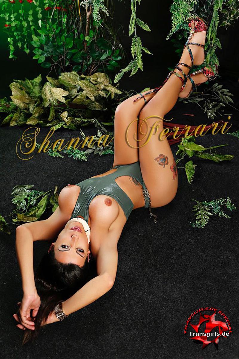 Foto Nr. 106973 von Shemale Trans Shanna Ferrari