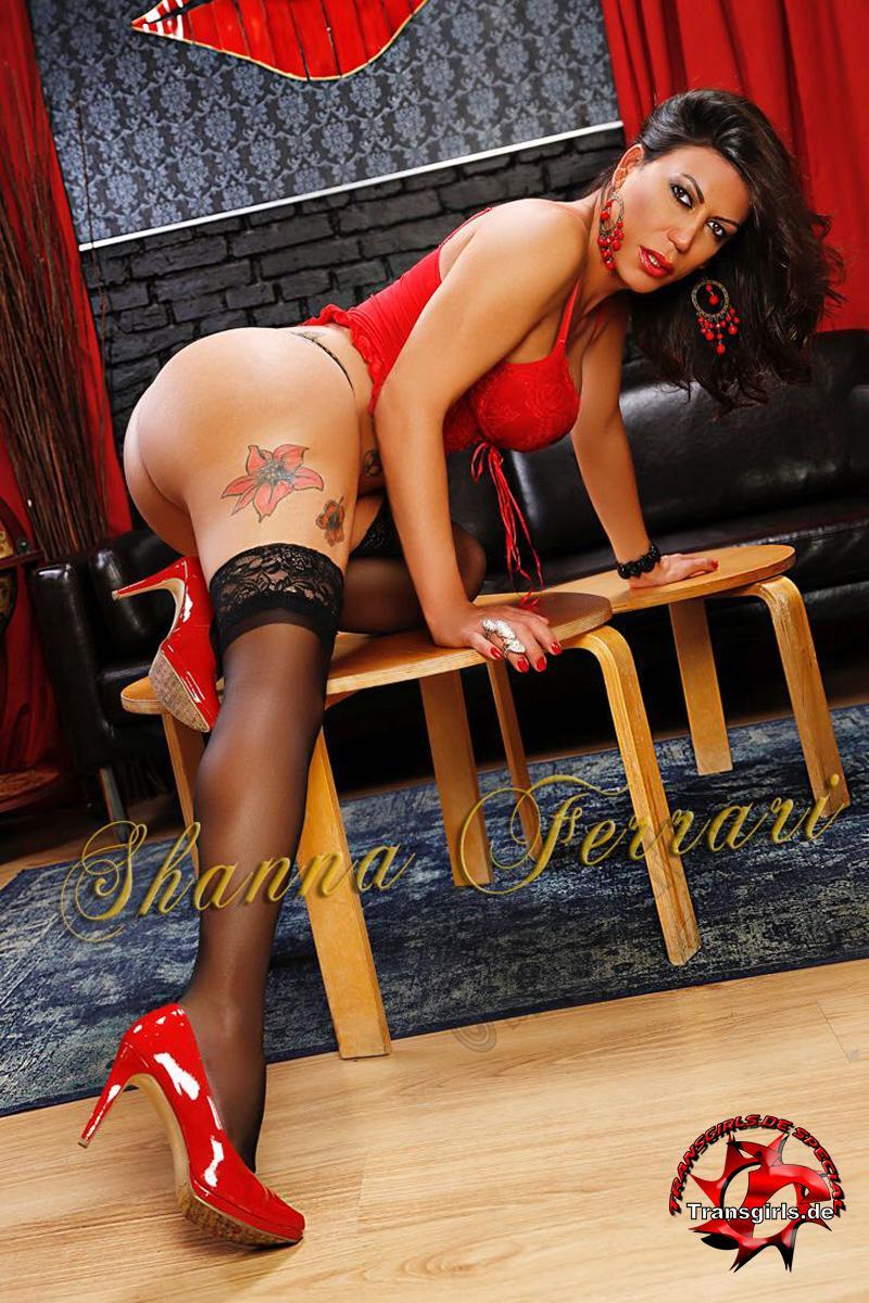 Foto Nr. 106971 von Shemale Trans Shanna Ferrari