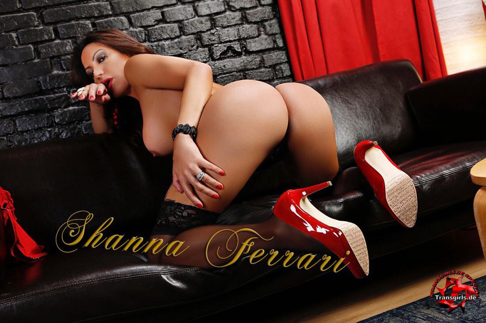 Foto Nr. 106970 von Shemale Trans Shanna Ferrari