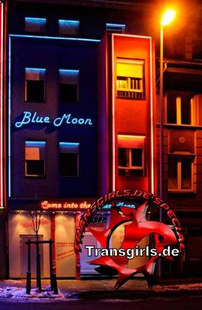 Foto Nr. 82281 von Shemale Trans Blue Moon