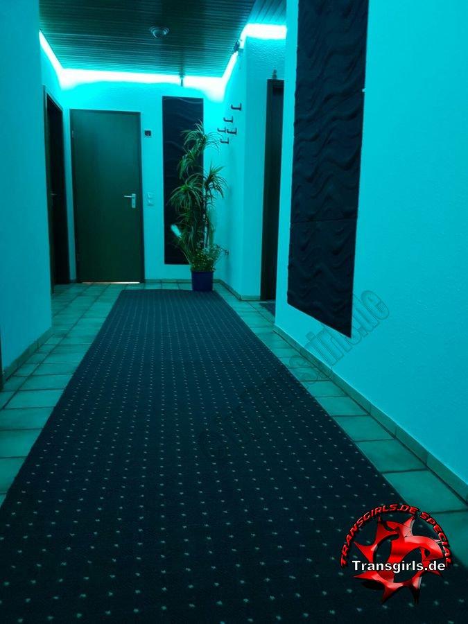 Foto Nr. 84428 von Shemale Trans Appartement Rendsburg