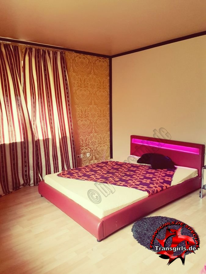 Foto Nr. 84431 von Shemale Trans Appartement Rendsburg
