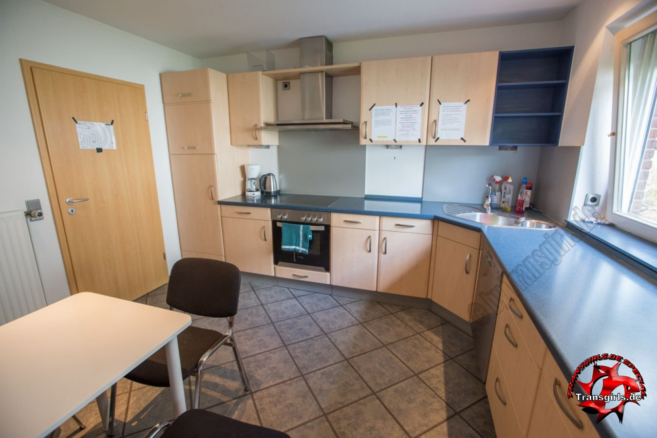 Foto Nr. 84410 von Shemale Trans Appartement Rendsburg