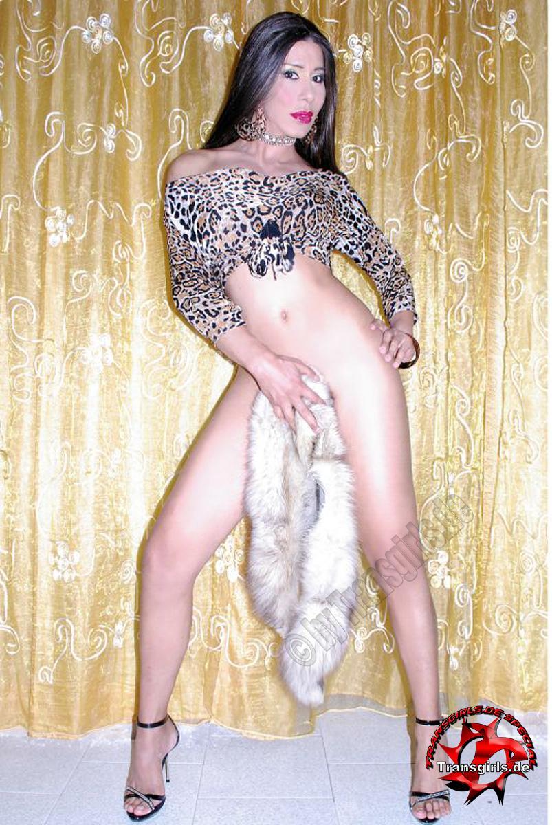 Foto Nr. 105872 von Shemale Trans Kriss Latina