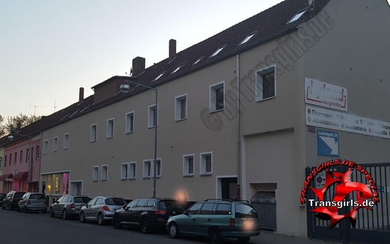 Foto Nr 95797 von Laufhaus & Bar Trans/Shemale in Hannover Ludwigstraße 26-27   Tel: 0175-8728112
