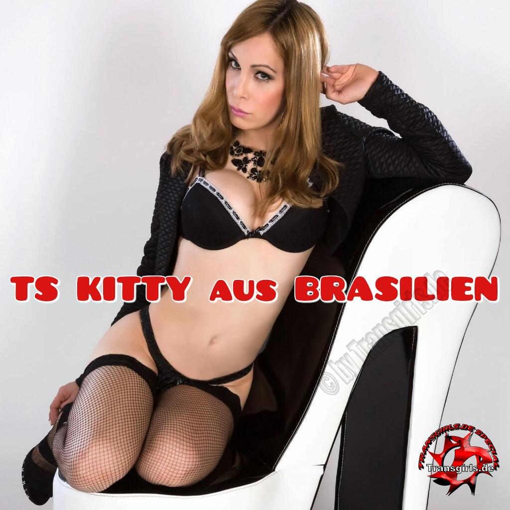 Foto Nr. 96229 von Shemale Trans Kitty