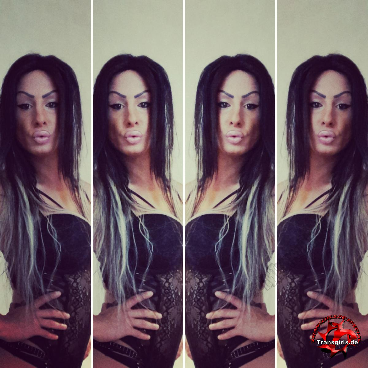 Foto Nr. 128874 von Shemale Trans Beatrice