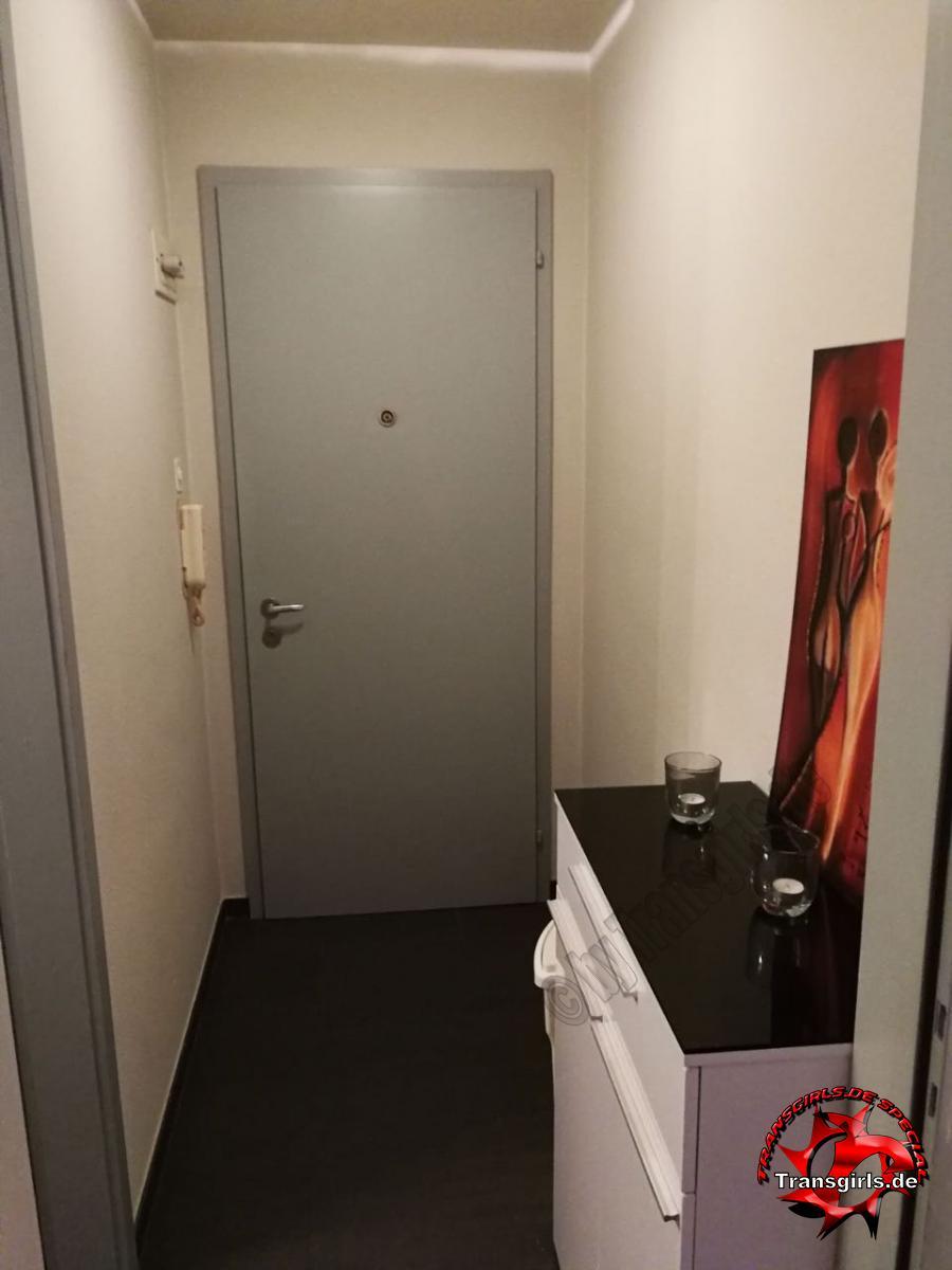 Foto Nr. 98459 von Shemale Trans Top Einzimmerwohnung