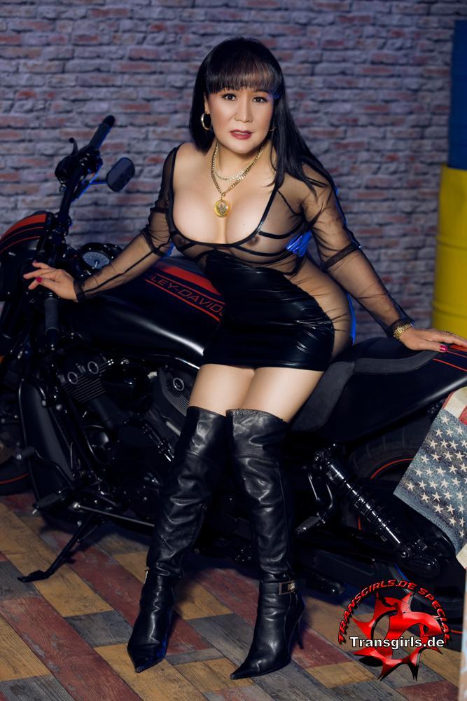 Foto Nr. 99175 von Shemale Trans Natalie