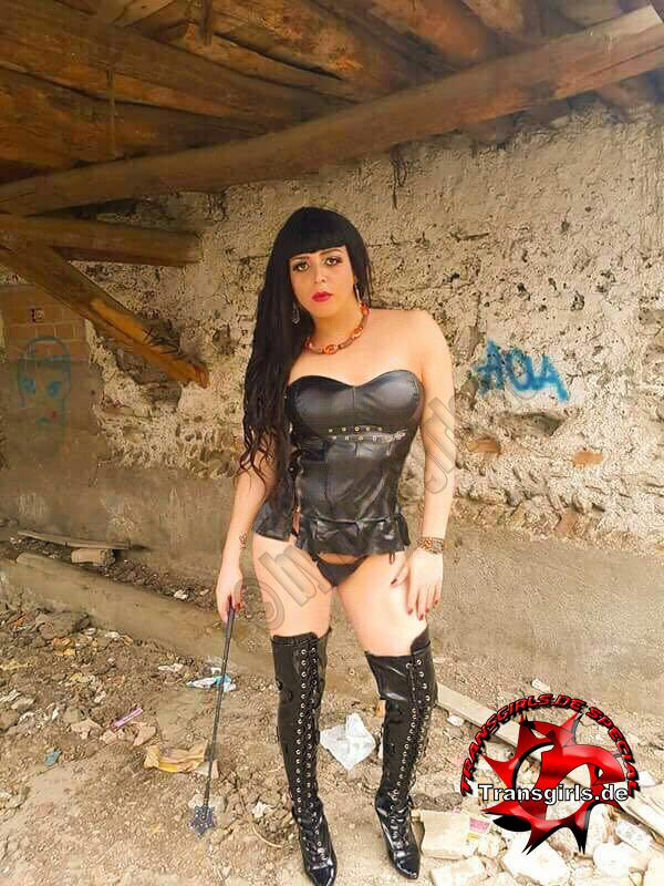 Foto Nr. 101033 von Shemale Trans Natasha Korss