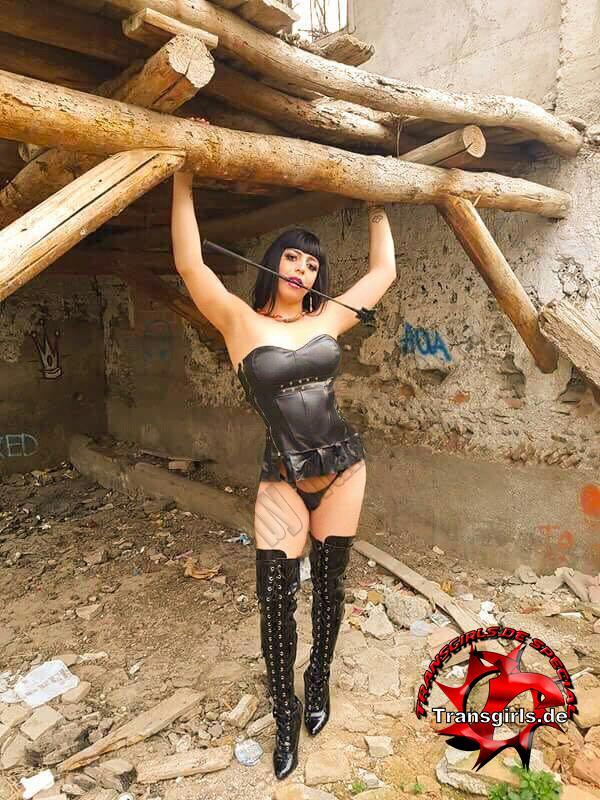 Foto Nr. 101034 von Shemale Trans Natasha Korss