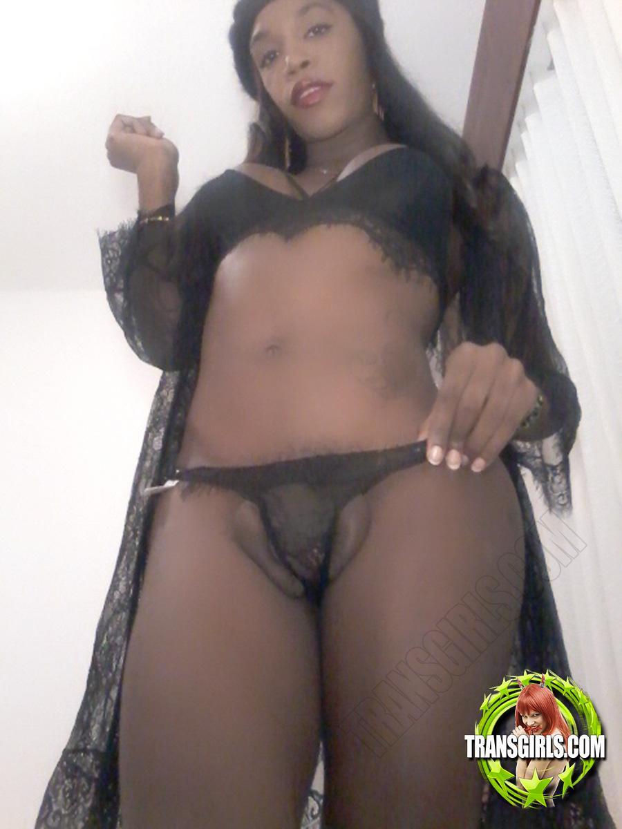 Foto Nr. 2540 von Shemale Trans Stefany