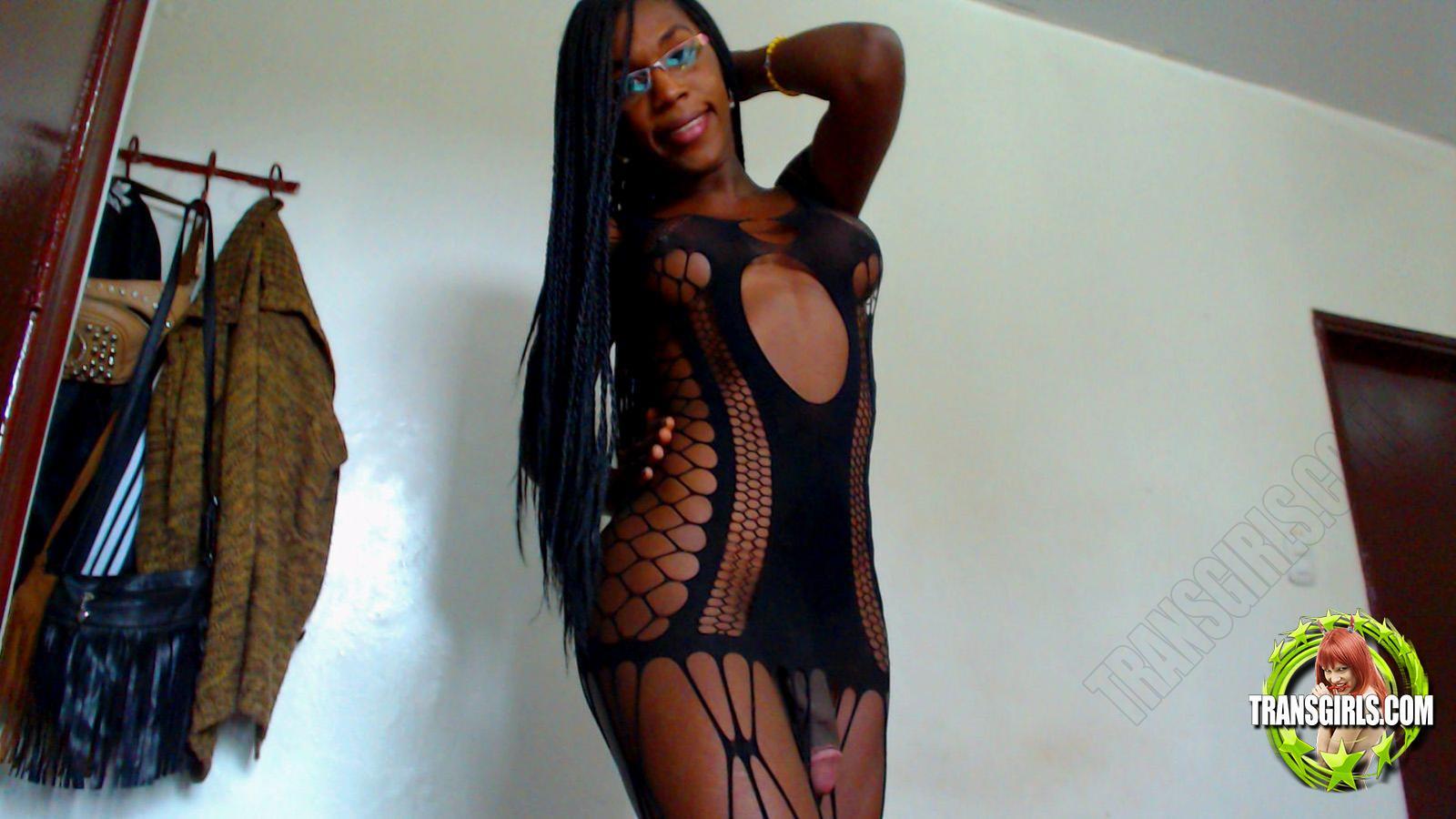 Foto Nr. 2534 von Shemale Trans Stefany