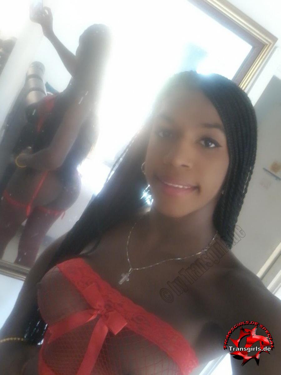 Foto Nr. 105129 von Shemale Trans Stefany