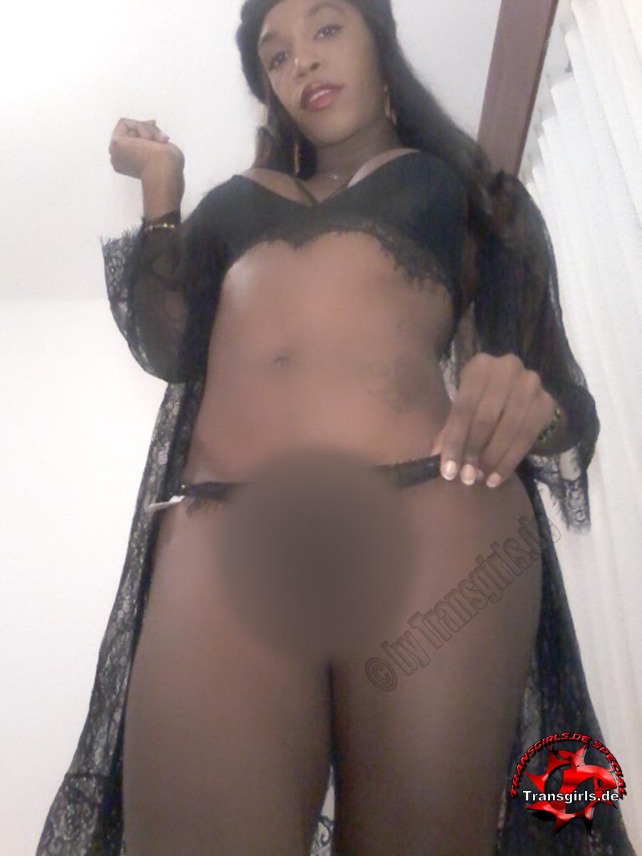 Foto Nr. 105108 von Shemale Trans Stefany